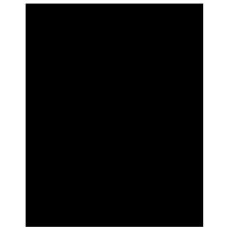 portrait-camille copie